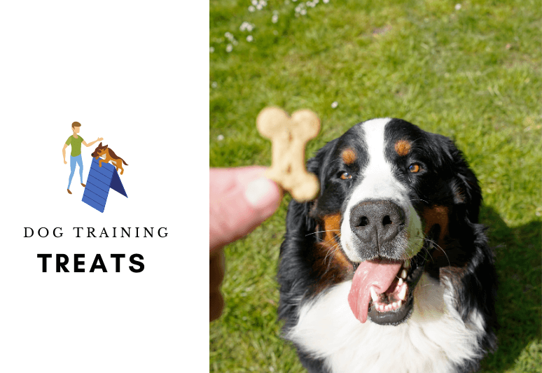 DOG TRAINING TREATS - DOG TREATS (1)