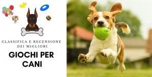 ?I Migliori Giochi Per Cani [ Classifica & Recensione 2020]