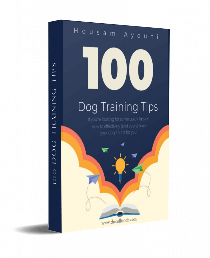100 dog training tips cover 1
