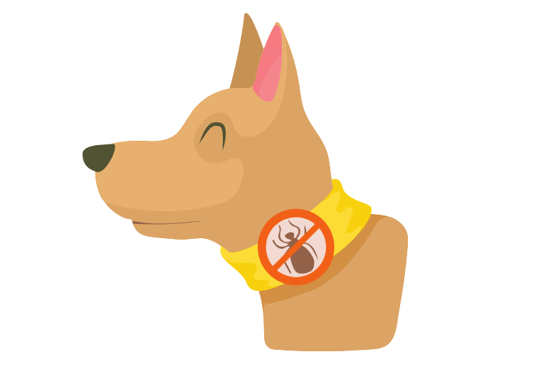 what is a flea collar - what is a tick prevention collar