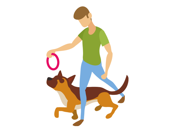 Adrienne faricelli dog training program - brain training for dogs review - is it worth your money is it a scam