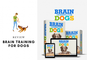 Adrienne faricelli dog training program - brain training for dogs review - is it worth your money is it a scam (1)