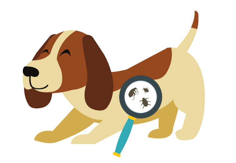 Best flea medicine for dogs The 7 Best tick medicine for dogs - how to prevent ticks and fleas on dogs with spot on, tablettes and collars (2)