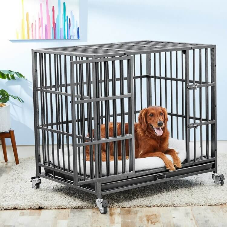 Best indestructible dog crate - heavy duty dog crates (1) (1)