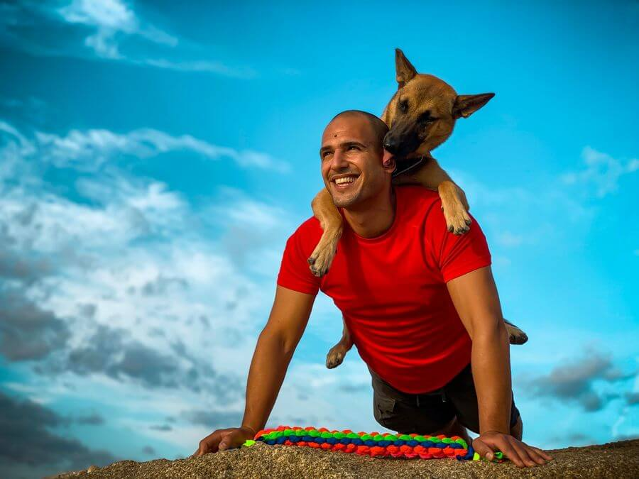 Brain Training for Dogs Review 2021: Does It Work? Is it Worth the Money? 1