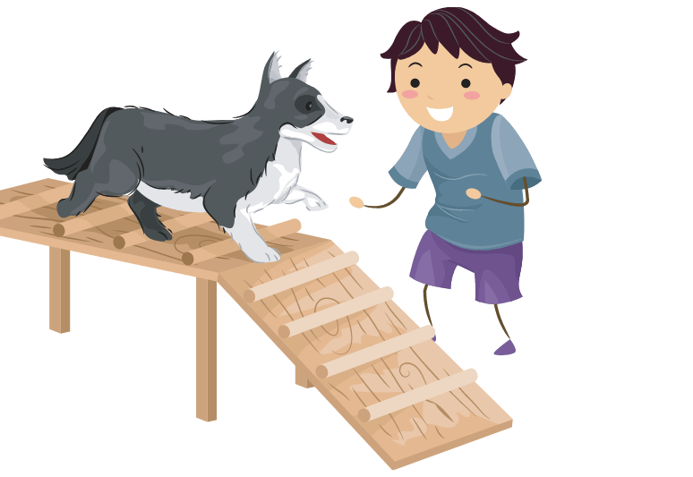 The best dog ramps for older dogs - top rated dog ramps for senior dogs - best car ramp for my old dog (1)