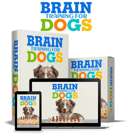 brain-training-for-dogs-review (1) (1)