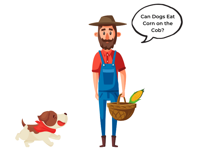 What do I do if my dog ate a corn cob –  Can dogs eat corn – can dogs have corn