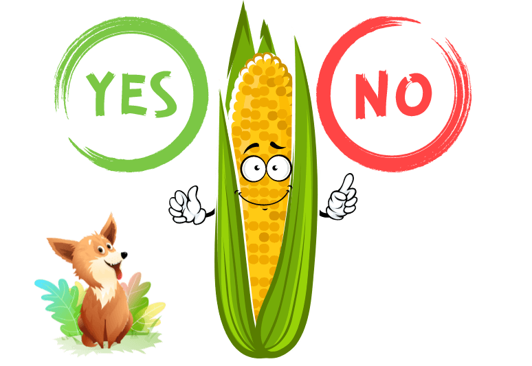 Can Dogs Eat Corn? Is Corn Safe For Dogs?