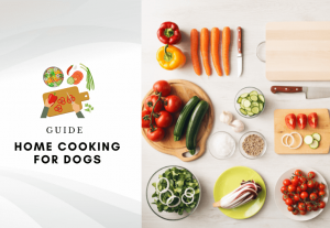 Home cooking for dogs - how to cook for my dog – homemade dog food