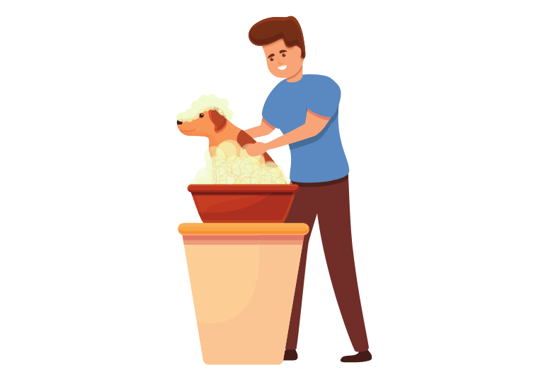 How often should I bath my dog – When And How To Bathe A Puppy