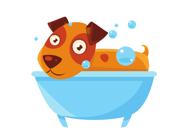 How often should you bathe a puppy –Washing And Brushing Your Dog