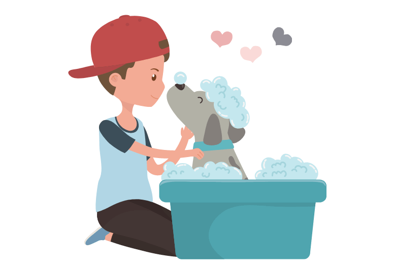 How often should you bathe a puppy –Can you bathe a puppy at 8 weeks old