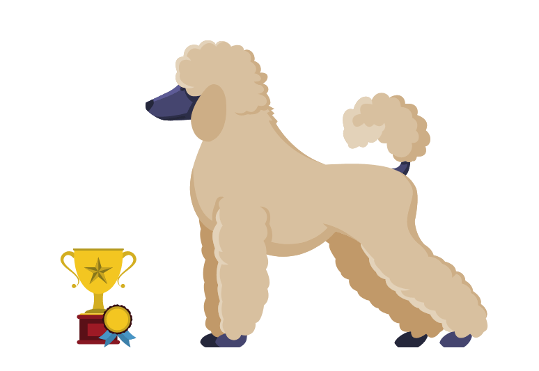 How to Tell if a Dog is Purebred - identify the breed of a dog - Purebred Dog Test (2)