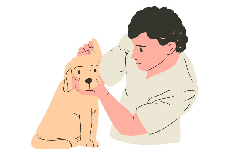 How to clean a puppy's ears at home: a handy guide (11 steps) 1