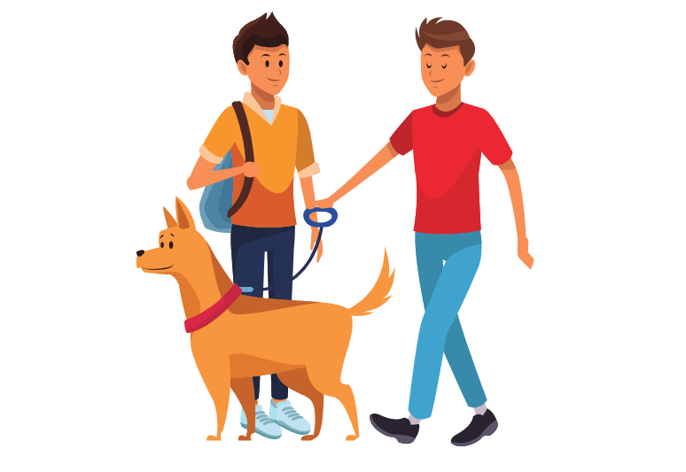How to train a disobedient dog - how to treat disobedience in dogs (3)