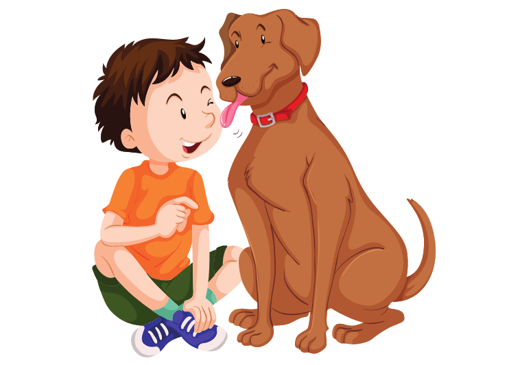 Why Do Dogs Chew Their Paws - paw licking in dogs