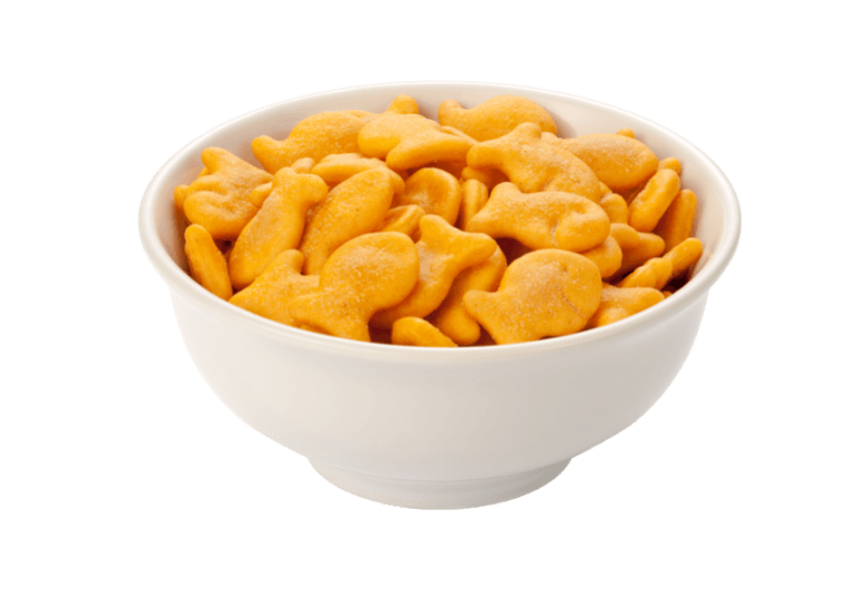 1. can dogs eat goldfish crackers –can dogs have goldfish crackers