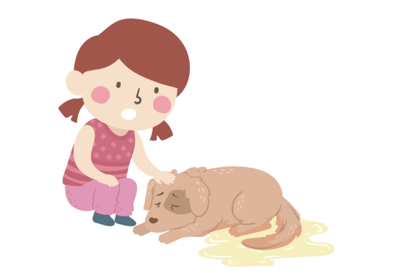 What can I give my dog for loss of appetite - my dog won't eat his food but will eat human food