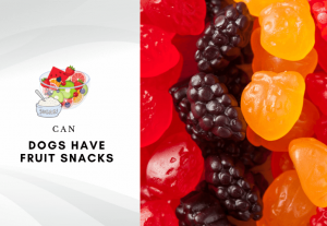 Can Dogs Have Fruit Snacks - are fruit snacks harmful to dogs - Can dogs eat fruit snack gummies