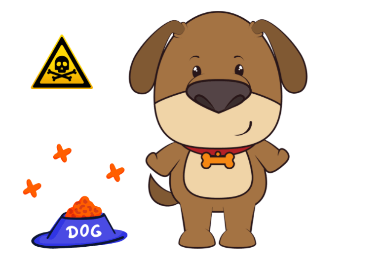 What are dogs NOT allowed to eat - toxic food for dogs