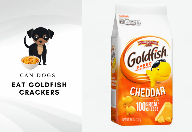 can dogs eat goldfish crackers –can dogs have goldfish crackers