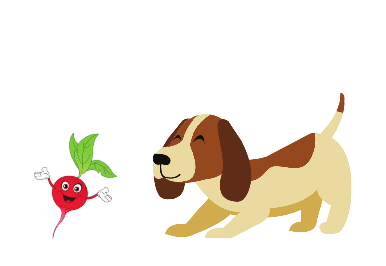 can dogs eat radishes - can dogs have radishes - can i give to my dog radish