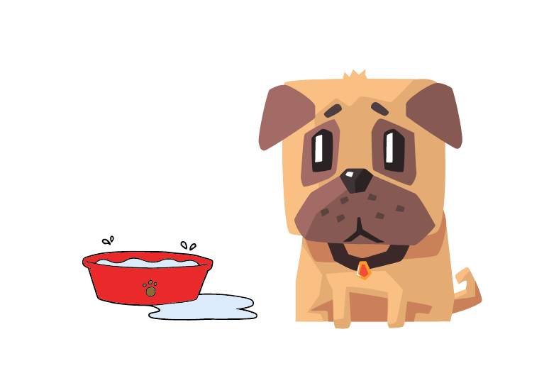 How to prevent dehydration in dogs - what to do if my dog is dehydrated - how to tell if a dog is dehydrated