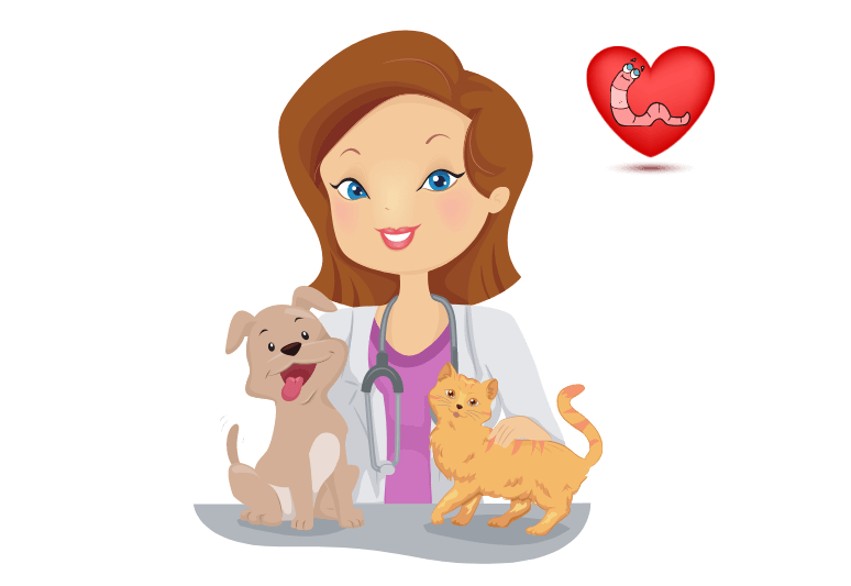 dog life expectancy after heartworm treatment - What are the first signs of heartworms in dogs -