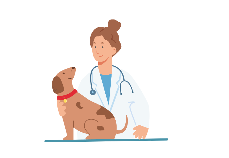 How to tell if a dog is spayed or fixed - how to know if a female dog is sterilized - benefits of spaying a dog (2)